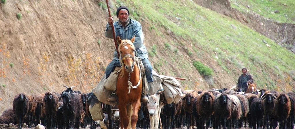 Bergers dans les montagnes de l'Ouzbekistan